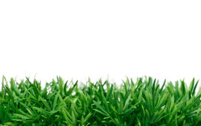 Synthetic grass uses